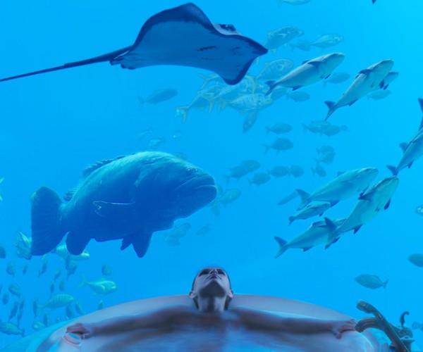 Underwater Suite 4