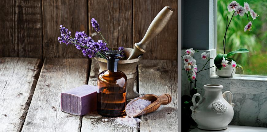 Lavendel und Orchidee fürs Bad