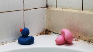 Schimmel an Badewanne und Fliesen
